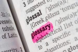 Ansicht_aus_Wörtrbuch_mit_unterstrichenem_glossary
